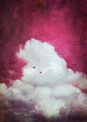 red magenta painterly mixedmedia cloud nature surreal birds simplicity minimalism cumulus photograph