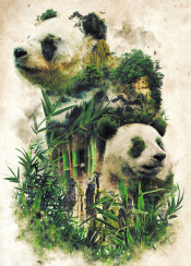 panda nature surrealism bamboo green china leaves trees mountains bear pandas cute mist dream fantasy forest dark blackandwhite natural organic collage realistic