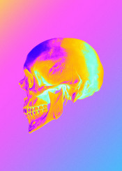 lusk skull colorful colors aesthetic gradient gradiant glitch glitched psyche psychedelic psychedelicart trippy acid new modern digital artistic head death dead died abstract