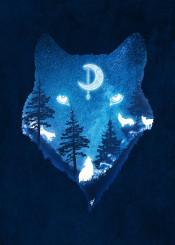 dverissimo designstudio animal animalia nature stars night lunar moon glow spiritual spirit wolf wolves dogs silhouette dark starry blue woods forest wild landscape howling illustration