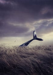 whale tale field dream traveler surreal photomanipulation birds sky clouds imaginative