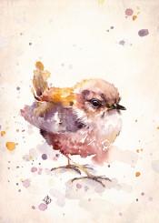 wren bird fluffy cute watercolor painting birds baby purple autumn charming sillier than sally