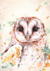 bird owl barn birds australian wildlife nature wild dramatic tree realistic watercolor painting