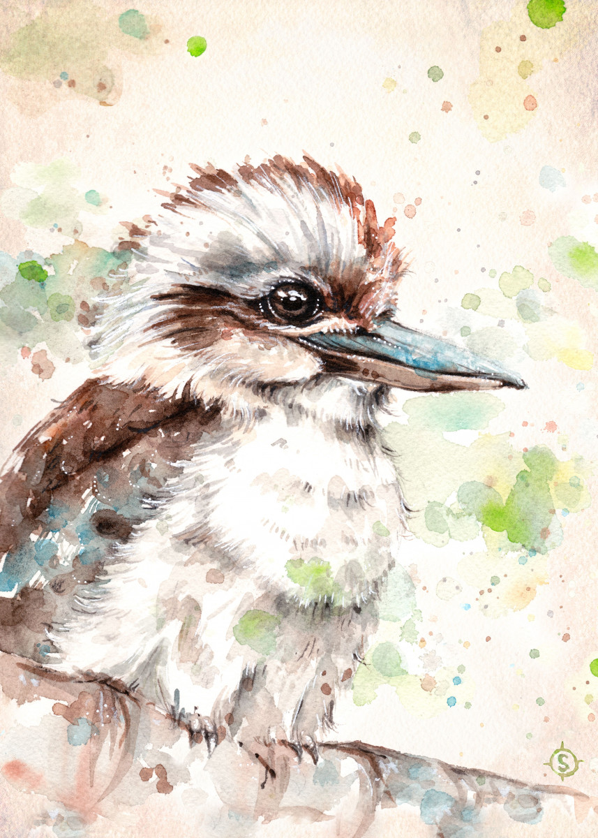 """A Kookaburra's Gaze"" Water Colour Art Gallery quality print on thick 45cm / 32cm metal plate. Each Displate print verified by the Production Master. Signature and hologram added to the back of each plate for added authenticity & collectors value. Magnetic mounting system included."