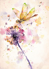dragonfly dandelion insect flower summer watercolor delightful purple breeze nature whisical natural