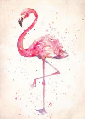 flamingo bird pink birds watercolor painting flying fun bright energy