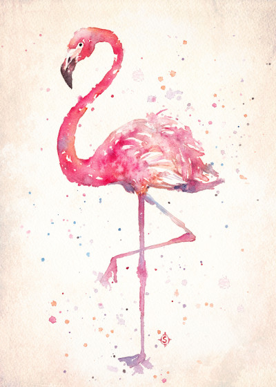 Sillier Than Sally  Water Colour Birds   Displate Prints on Steel