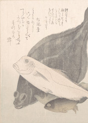 asia japan vintage fish graphic