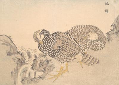 Fine Art   Asian Nature Woodcuts   Displate Prints on Steel