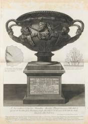 vase vintage graphic classical ornaments