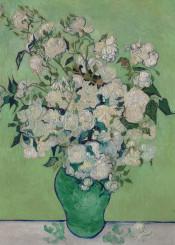 classic vincentvangogh vangogh flowers