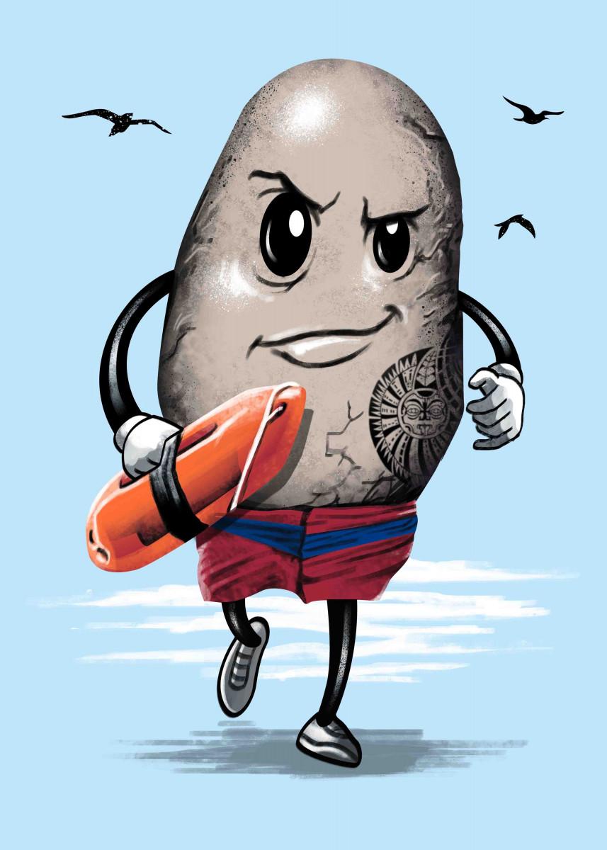 The Rock Lifeguard 292842
