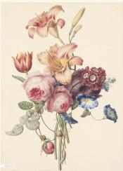 vintage illustration flower flowers book