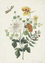 vintage flower illustration book