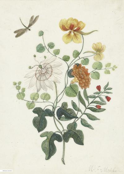 Fine Art   Flower Bomb Rijksmuseum   Displate Prints on Steel
