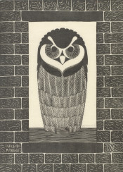 vintage graphic illustration owl