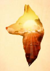 designstudio dverissimo fox animal sunset sun orangew silhouette nature scenic illustration story orange bright light afternoon dusk wild woods rabbit