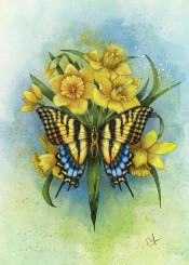 papillon yellow daffodils