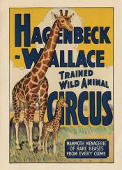vintage, poster, vintageposter, girraffe, circus