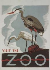 vintage, poster, vintageposter, animals, birds, zoo