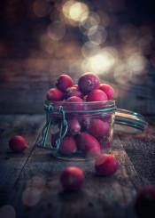 radish food feed vegetables rustic cuisine bokeh light