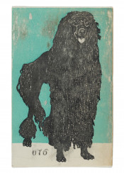 vintage,illustration,dog,poodle,animals