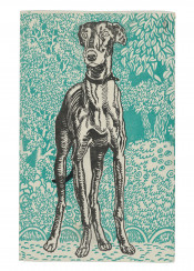 illustration,vintage,dog,animals,greyhound