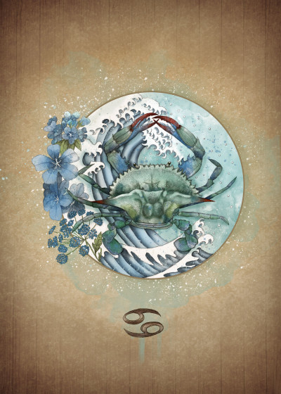 Marine Loup Zodiac   Displate Prints on Steel