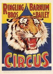 vintage,vintageposter,animals,tiger,cirgus