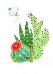 cactus plant family