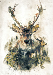 deer surrealism fantasy nature natural woods outdoors forest plants wild wildlife rustic deers hunting animal trees horns stag mountains waterfall green biology environment ecology alive