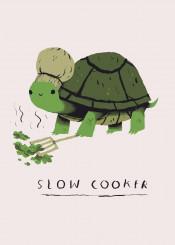 slowcooker chef turtle tortoise