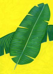 leaf plant botanical tropical banana painting exotic