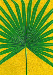 palm leaf exotic tropical botanical painted