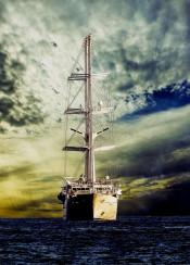 sea ship freedom
