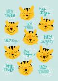 Hey tiger!