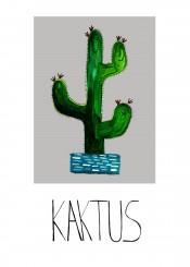 plant cactus picture illustration