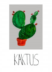 plant cactus flower illustration potery nice kaktus