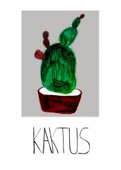 plant cactus flowet pot