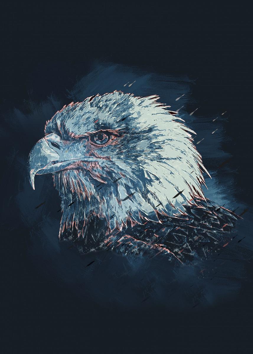 Eagle - Wild and Free