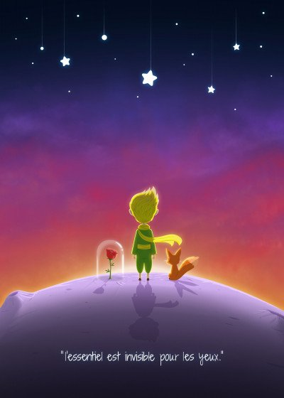 Christopher Sanabria The Little Prince   Displate Prints on Steel