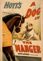 dog,horse,animals,animalsposter,vintage