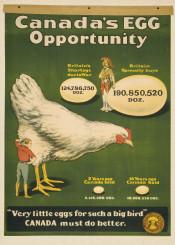 hen,eggs,vintage,animalsposter,animals