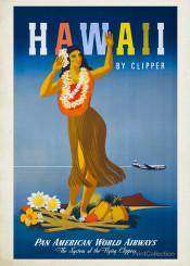 vintage,travel,travelposter,poster,hawaii