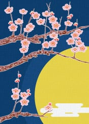 japan japanese oriental sakura tree moon flowers nature night
