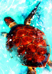 turtle animal animals watercolor jbjart digital decor decoration illustration