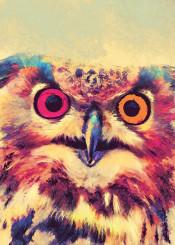 owl owls animals animal bird bords jbjart watercolor digital decor decoration illustration painting