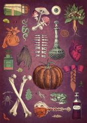 halloween magic fantasy bottles witch botanic plants spider bones purple green orange marsala textured old retro illustration collage frog inspirational