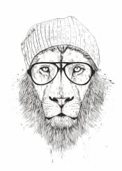 lion animal drawing humor funny hipster beanie blackandwhite