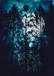 trees dark surreal moon blue night eerie mood forest magic texture